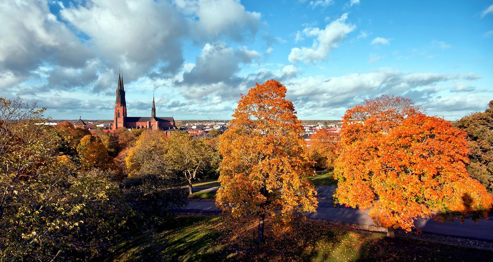 partner med Aarhus